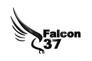 Falcon37, Rapid Target Engagement Systems Company