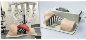 Thoracic Surgical Simulator for Da Vinci Surgical System