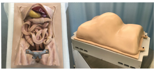 Abdominal Surgical Simulator for Da Vinci Surgical System