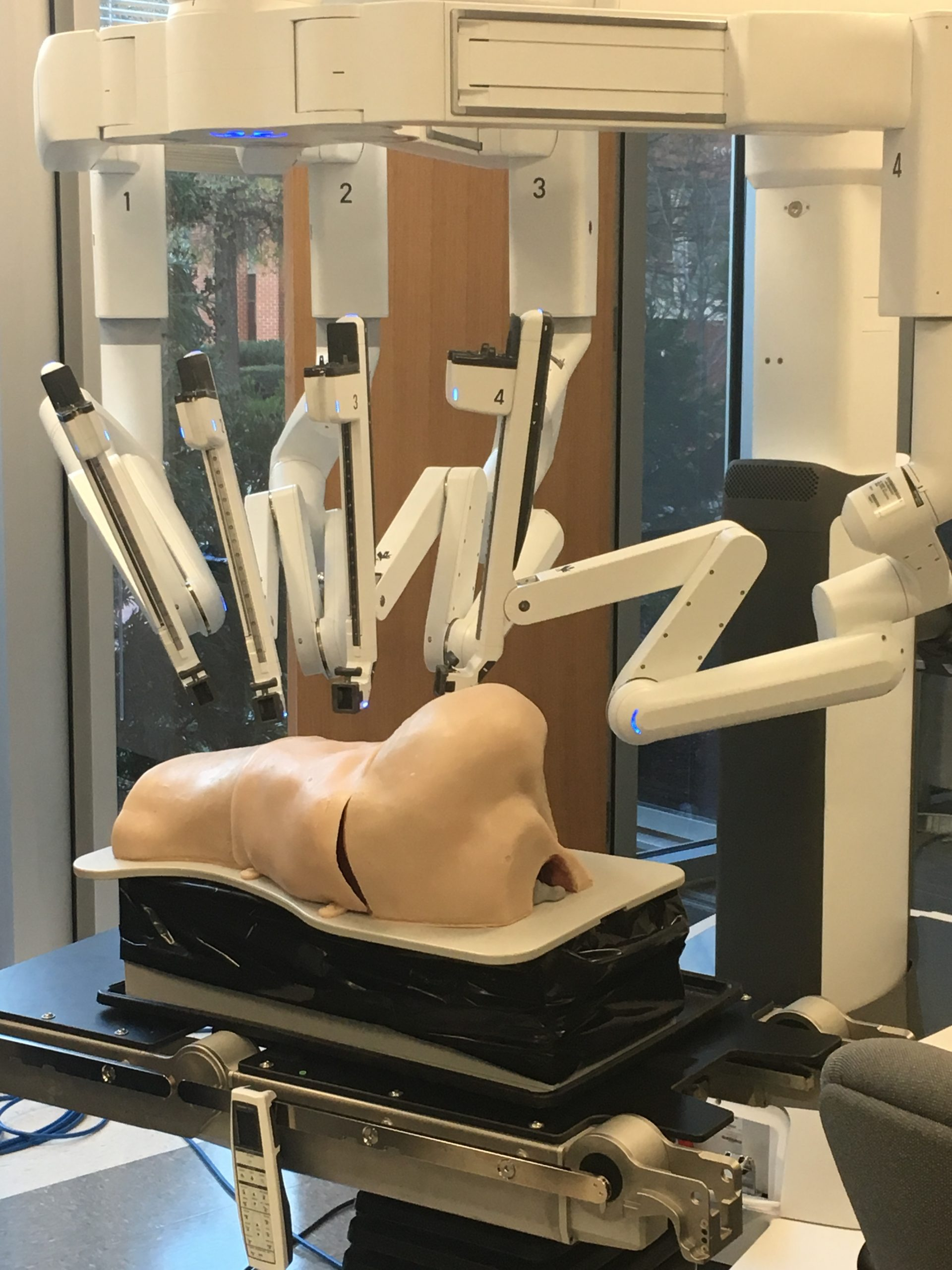 Rubber Mannequin with da Vinci Surgical System