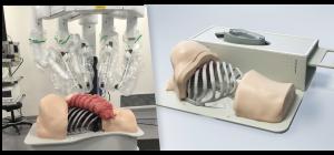 Thoracic Surgery Simulator