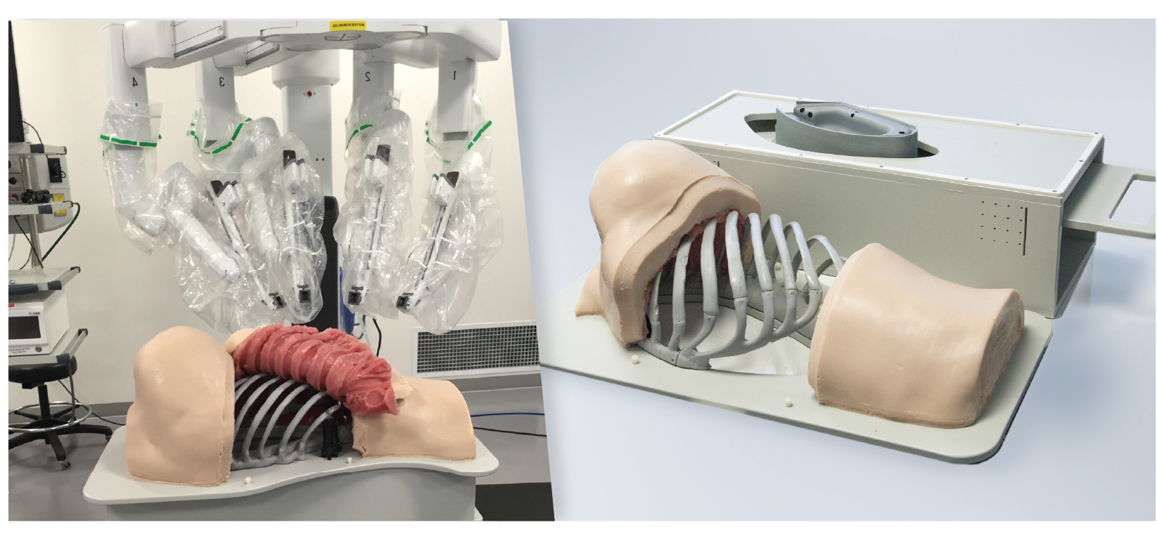 Thoracic Surgery Simulator